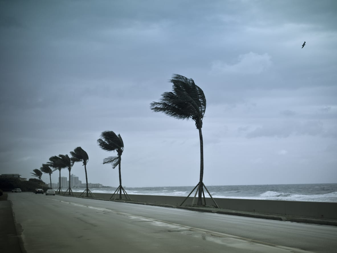 hurricane-winds